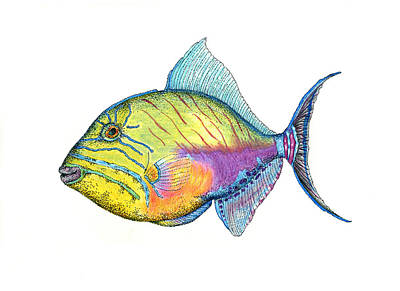 Triggerfish Mixed Media - Queen Triggerfish by Ariel Granot