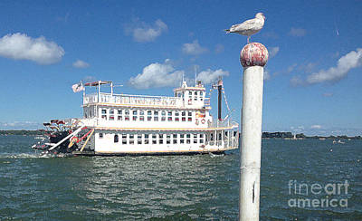 Photograph - Queen Victoria Ferry And Seagull by Anne Cameron Cutri