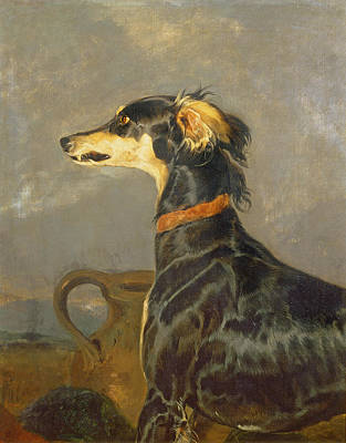 Saluki Painting - Queen Victorias Favourite Dog, Eos by Sir Edwin Landseer