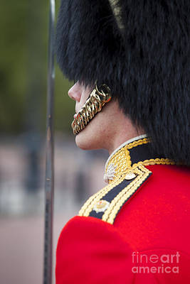 Buckingham Palace Photograph - Queens Guard by Brian Jannsen