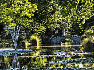 Photograph - Queenstown Gardens Fountain by Karen Lewis