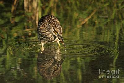 Photograph - Quench by Heather King