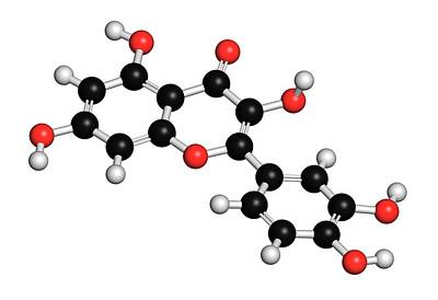 Molecule Photograph - Quercetin Plant Molecule by Molekuul
