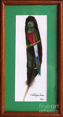 Painting - Quetzal Feather Painting by Rudi Prott