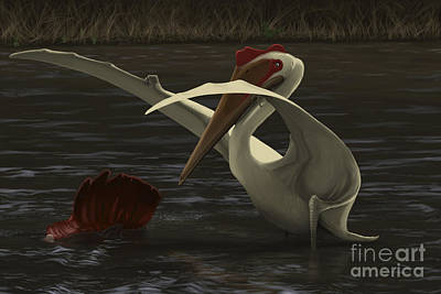 Carcass Digital Art - Quetzalcoatlus Hunting For Food by Michele Dessi