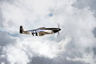 North American P51 Mustang Digital Art - Quicksilver by J Biggadike
