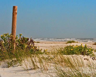 Quiet Beach Original by Barbara Rabek