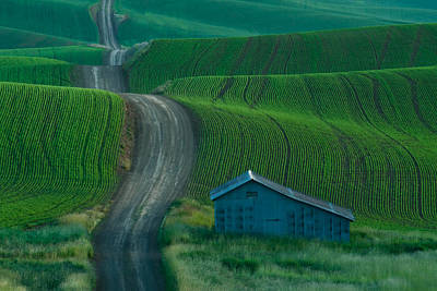 Photograph - Quiet Country Road by Don Schwartz