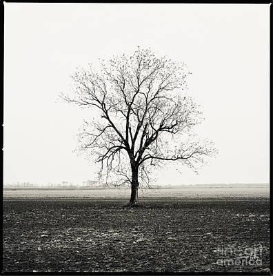 Pellegrin Photograph - Quiet Desperation by Scott Pellegrin