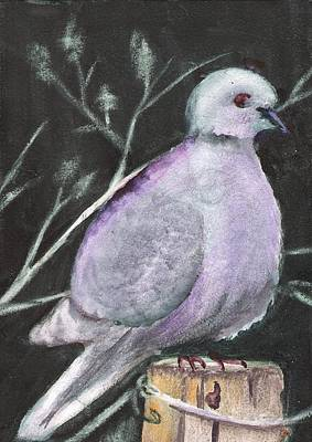 Painting - Quiet Dove by Marsha Woods