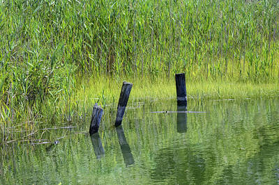 Photograph - Quiet Green Waters Connecticut Saltwater Marsh  by Marianne Campolongo