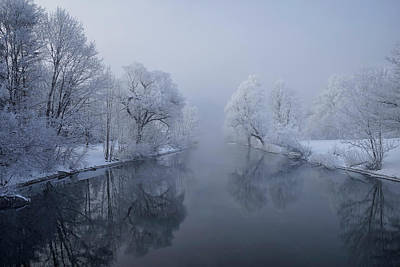 Frost Photograph - Quiet Morning by Norbert Maier