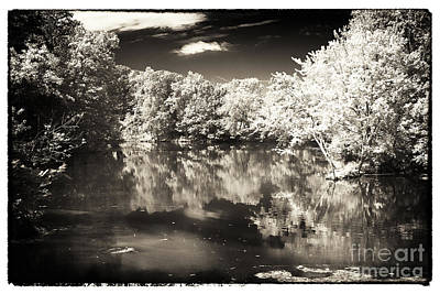 Quiet On The Pond Art Print by John Rizzuto