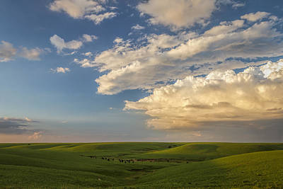 Photograph - Quiet On The Prairie by Scott Bean