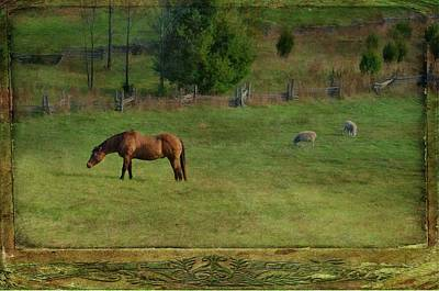 Photograph - Quiet Pastures by Jan Amiss Photography