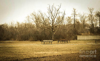 Photograph - Quiet Place 2 by Andrea Anderegg