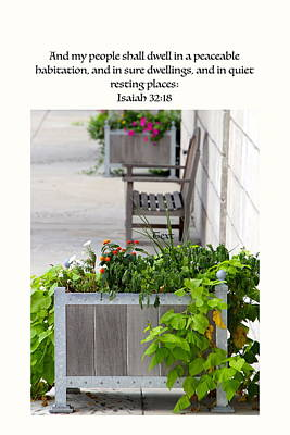 Quiet Resting Places Art Print