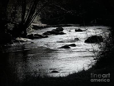 Photograph - Quiet Stream by Cynthia Mask