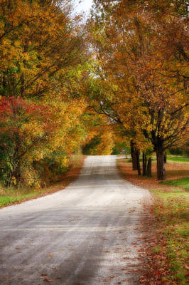 Fall Foliage Digital Art - Quiet Vermont Backroad by Jeff Folger