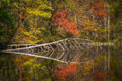Quiet Waters In Autumn Art Print by Debra and Dave Vanderlaan