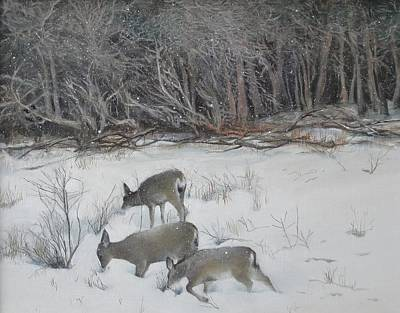 Painting - Quiet Winter Day  by Terri Ana Stokes