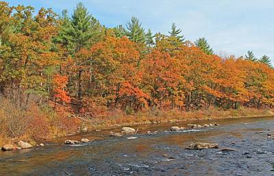 Photograph - Quinapoxet River In Autumn by Michael Saunders