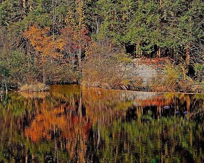 Photograph - Quinapoxet River Reflection 1 by Michael Saunders