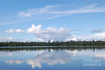Wall Art - Photograph - Quistococha Lake Reflections Iquitos Peru by Susan Montgomery