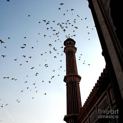 Photograph - Jama Masjid - Minaret by Jacqueline M Lewis
