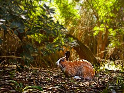 Digital Art - Rabbit - 1983 - Modern Rabbit Art by James Ahn