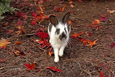 Mixed Media - Rabbit Art - 5017 by James Ahn