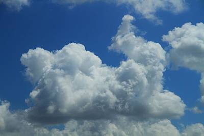 Rabbit Photograph - Rabbit Cloud by Dan Sproul