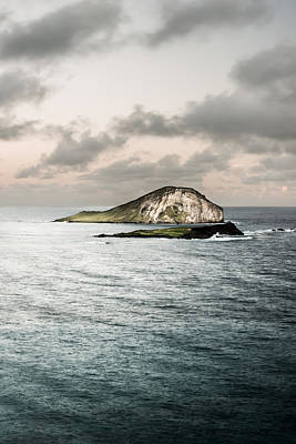 Photograph - Rabbit Island by Jason Bartimus