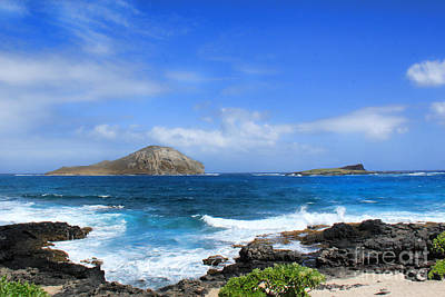 Rabbit Manana Island Oahu Hawaii Art Print