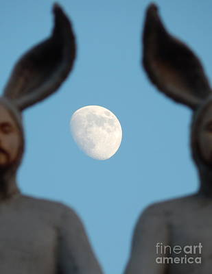 Photograph - Rabbit People On A Roof In New Orleans Louisiana Moon Focus #4 by Michael Hoard