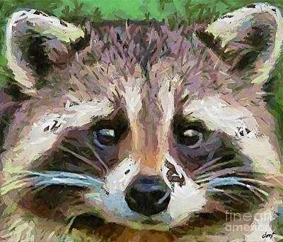 Raccoon Painting - Raccoon by Dragica  Micki Fortuna