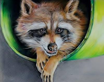 Raccoon  Art Print by Jean Cormier