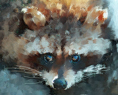 Raccoon Digital Art - Raccoon by Yury Malkov