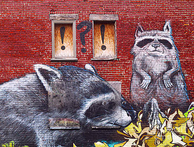 Photograph - Raccoons by Ethna Gillespie