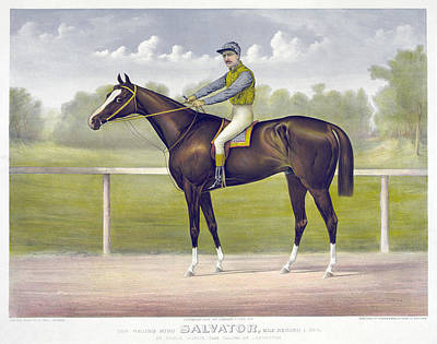Painting - Race Horse, C1891 by Granger