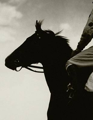 Jockeys Photograph - Race Horse Gallant Fox by Edward Steichen
