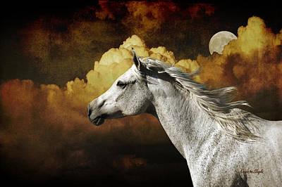Running Horses Photograph - Racing The Moon by Karen Slagle
