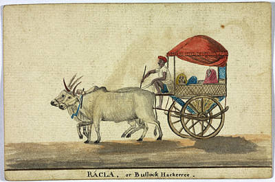 Racla Print by British Library
