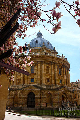 Radcliffe Camera Bodleian Library Oxford  Art Print