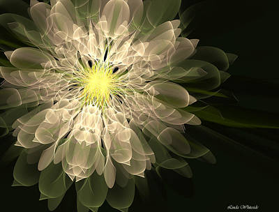 Digital Art - Radiance by Linda Whiteside