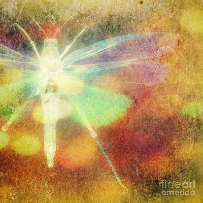Grasshopper Digital Art - Radiance by Valerie Reeves