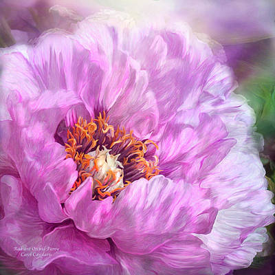 Mixed Media - Radiant Orchid Peony by Carol Cavalaris
