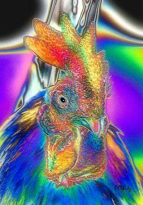 Photograph - Radiant Rooster by Patrick Witz