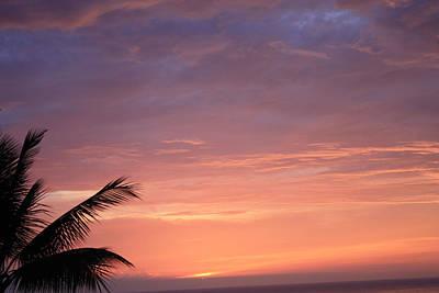 Art Print featuring the photograph Radiant Sunset by Karen Nicholson