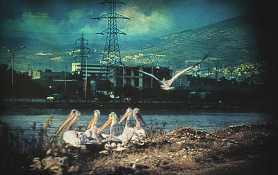 Contradiction Photograph - Radioactive Days by Taylan Soyturk